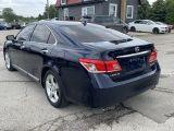 2010 Lexus ES 350  Photo24