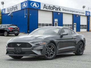 Used 2019 Ford Mustang Coupe Ecoboost Premium for sale in Georgetown, ON