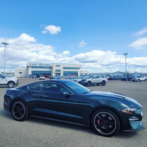 2019 Ford Mustang BULLITT Fastback  - $453 B/W