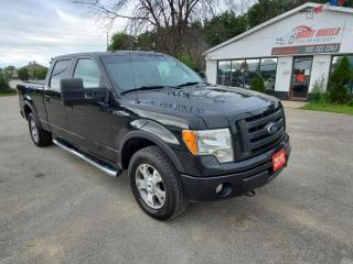 Used 2010 Ford F-150 FX4 for sale in Barrie, ON