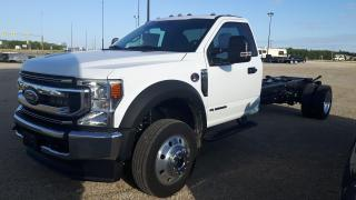 New 2022 Ford F-550 4 x 4 Chassis Cab DRW for sale in Elie, MB
