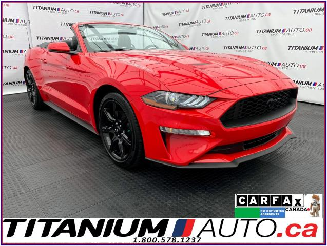 2019 Ford Mustang Convertible Premium PKG+GPS+Cooled Leather+XM
