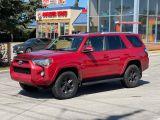 2014 Toyota 4Runner SR5 Navigation/Sunroof/7 Pass/Leather Photo18