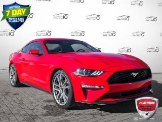 Used 2019 Ford Mustang EcoBoost Premium | CLEAN CARFAX | LEATHER | HEATED SEATS | 20