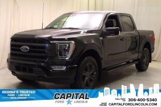 New 2021 Ford F-150 for sale in Regina, SK
