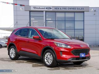 New 2021 Ford Escape SE 0% APR   CO-PILOT   CONV PKG   CLD WTHR PKG   for sale in Winnipeg, MB