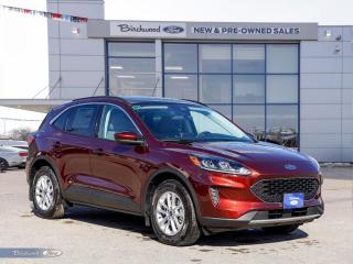 New 2021 Ford Escape SE   0% APR   ROOF   CO-PILOT   CONV PKG   for sale in Winnipeg, MB