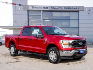 New 2021 Ford F-150 XLT 0.99% APR | ECO | PLTFRM RUN BOARDS | for sale in Winnipeg, MB