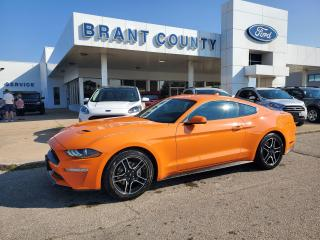 New 2021 Ford Mustang EcoBoost for sale in Brantford, ON
