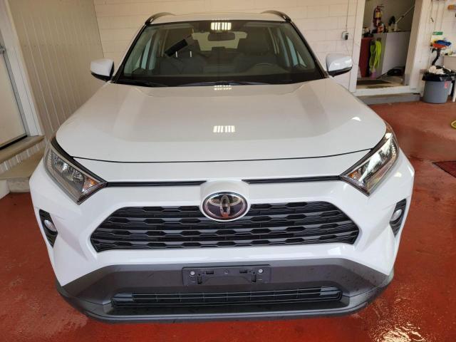 2019 Toyota RAV4 XLE FWD Photo5