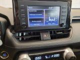 2019 Toyota RAV4 XLE FWD Photo45