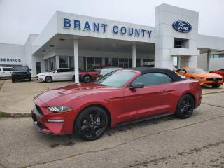 New 2021 Ford Mustang Premium Ecoboost for sale in Brantford, ON