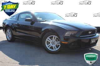 Used 2014 Ford Mustang V6 Premium ONE OWNER NO ACCIDENTS CERTIFIED for sale in Hamilton, ON