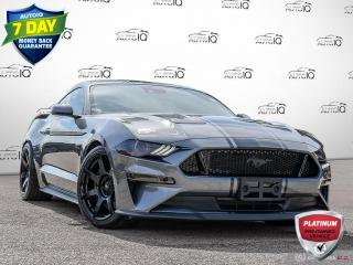 Used 2021 Ford Mustang GT   Premium Must See Tons of Mods !! for sale in Oakville, ON
