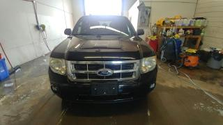 Used 2010 Ford Escape FWD 4dr XLT for sale in Windsor, ON