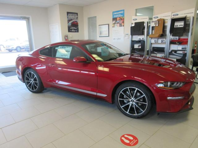 2021 Ford Mustang Coupe BASE