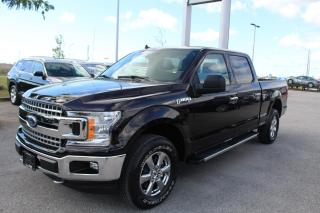 Used 2019 Ford F-150 5.0L XLT for sale in Whitby, ON