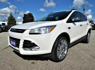Used 2016 Ford Escape SE | Navigation | Heated Seats | Back Up Cam for sale in Essex, ON