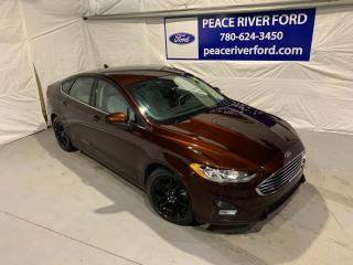 Used 2019 Ford Fusion SE for sale in Peace River, AB