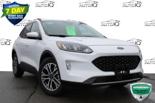 Used 2020 Ford Escape SEL ONE OWNER NO ACCIDENTS CERTIFIED for sale in Hamilton, ON