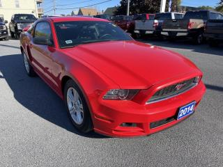 Used 2014 Ford Mustang for sale in Cornwall, ON