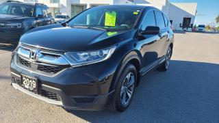 Used 2019 Honda CR-V LX AWD for sale in Kingston, ON
