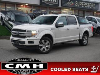 Used 2019 Ford F-150 for sale in St. Catharines, ON