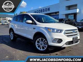 Used 2019 Ford Escape SE for sale in Salmon Arm, BC