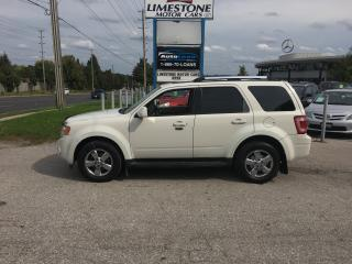 Used 2009 Ford Escape Limited for sale in Newmarket, ON