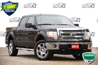 Used 2014 Ford F-150 XLT 302A | 20