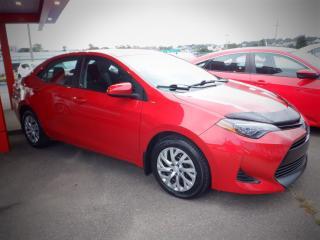 Used 2019 Toyota Corolla LE for sale in Saint John, NB