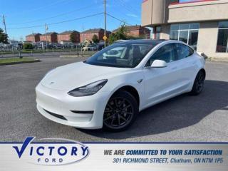 Used 2020 Tesla Model 3 Standard Range Plus | AUTOPILOT | NAV | GLASS ROOF for sale in Chatham, ON