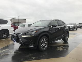 Used 2019 Lexus NX 300h for sale in Richmond, BC