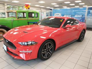 Used 2019 Ford Mustang Premium Coupe for sale in Mississauga, ON