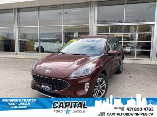 New 2021 Ford Escape SEL for sale in Winnipeg, MB