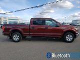 2015 Ford F-150 XLT  - Bluetooth -  SiriusXM - $330 B/W