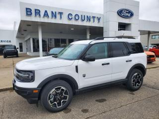 Used 2021 Ford Bronco Sport BIG BEND for sale in Brantford, ON