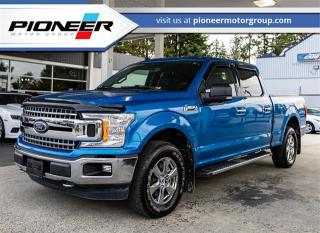 Used 2019 Ford F-150 XL for sale in Maple Ridge, BC