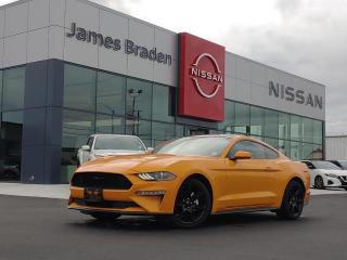 Used 2018 Ford Mustang EcoBoost for sale in Kingston, ON