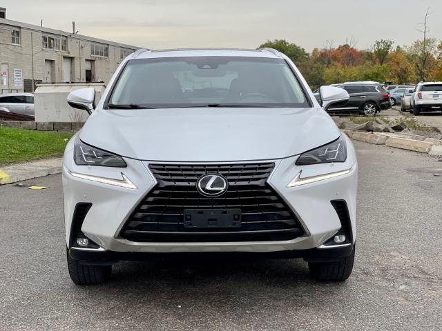 2019 Lexus NX NX 300 Navigation/Sunroof/Blind Spot Photo10