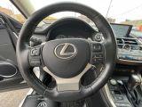 2019 Lexus NX NX 300 Navigation/Sunroof/Blind Spot Photo35