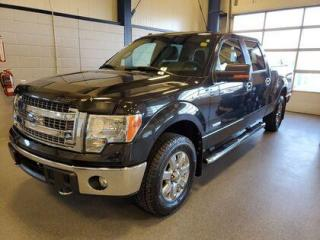 Used 2014 Ford F-150 for sale in Moose Jaw, SK