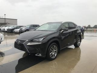 Used 2020 Lexus NX 300 for sale in Richmond, BC