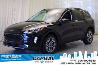 New 2021 Ford Escape SEL Hybrid for sale in Regina, SK