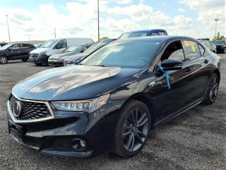 Used 2018 Acura TLX Tech A-Spec w/Red Leather for sale in Kitchener, ON