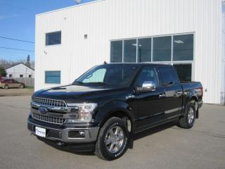 Used 2019 Ford F-150 Lariat for sale in Southey, SK