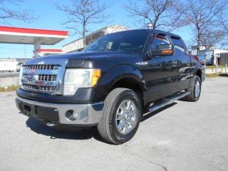 Used 2013 Ford F-150 XLT XTR 4X4 Crew Cab 5.5Ft Box Certified for sale in Rexdale, ON