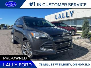 Used 2016 Ford Escape SE, Chrome Package, Nav, Local Trade!! for sale in Tilbury, ON