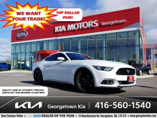 Used 2015 Ford Mustang ECOBOOST | CLN CRFX | BU CAM | 51K | BLUETOOTH for sale in Georgetown, ON