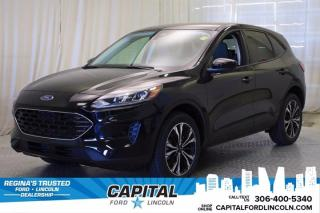 New 2021 Ford Escape SE for sale in Regina, SK